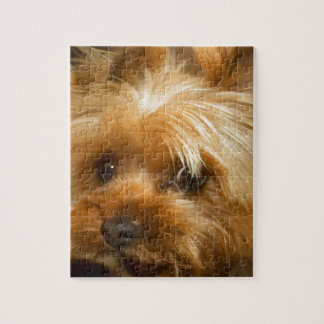 Wait for mom love  haley dog yorkie terrier jigsaw puzzle