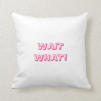 Wait What! Pillow