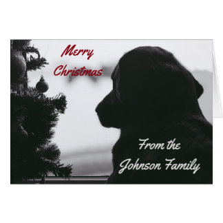 Waiting Black Lab and Christmas Tree Card
