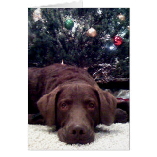 Waiting for Santa Card