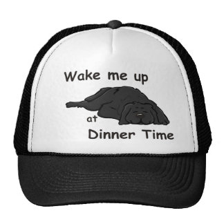 Wake Me Up At Dinner Time Cap