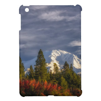 Waking Up iPad Mini Case