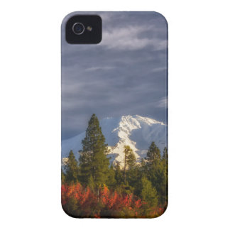 Waking Up iPhone 4 Cases
