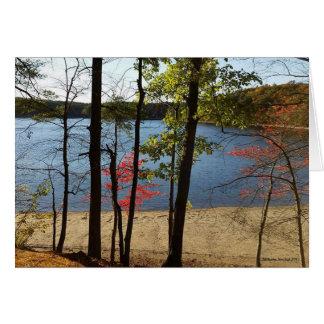 Walden Pond foliage greeting card