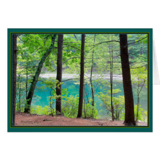 Walden Pond: Ice Fort Cove Card