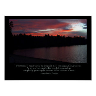 Walden Pond Poster - Love Note to the Sky