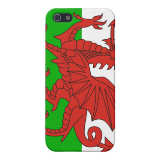 wales country dragon flag british iPhone 5/5S case