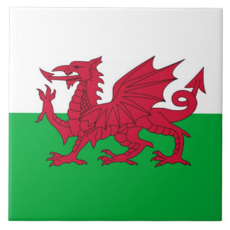 WALES LARGE SQUARE TILE
