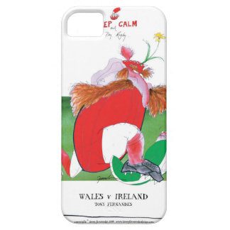 wales v ireland rugby balls by tony fernandes iPhone 5 cover