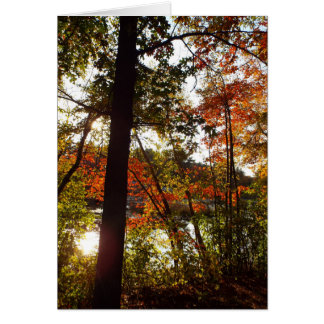 Walk in the woods autumn card customize your text
