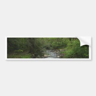 Walk in the Woods Car Bumper Sticker