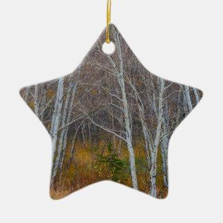 Walk In The Woods Ceramic Ornament