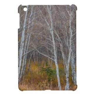 Walk In The Woods iPad Mini Cases