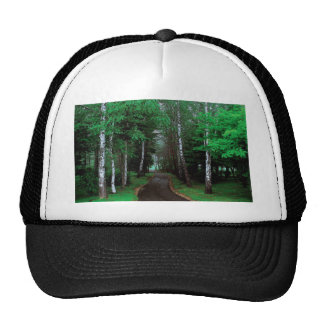 Walk Through The Forest Cap