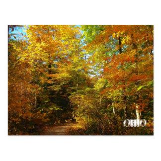 walk with me, OHIO Postcard