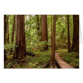 Walk your own path greeting card