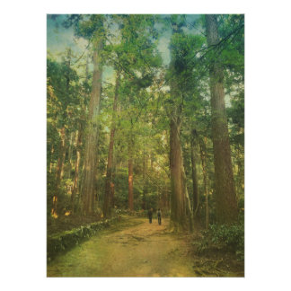 Walking Along Tranquil Kozan-ji Forest Kyoto Japan Poster