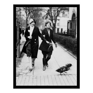 Walking Ducks in Washington, DC 1926 Poster