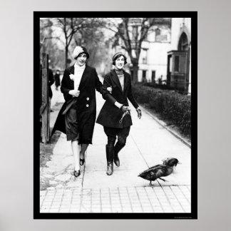 Walking Ducks in Washington DC 1926 Posters