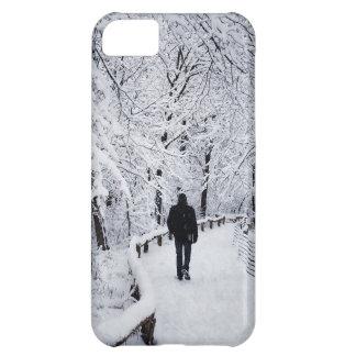 Walking In A Winter Wonderland iPhone 5C Case