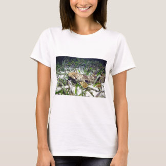 Walking shark in Raja Ampat T-Shirt