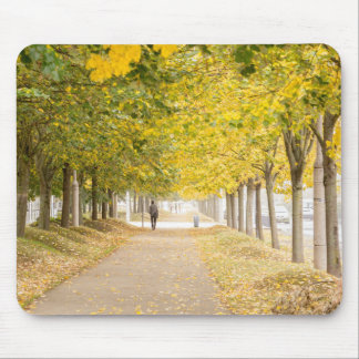 Walking under the trees in Autumn I Mouse Pad