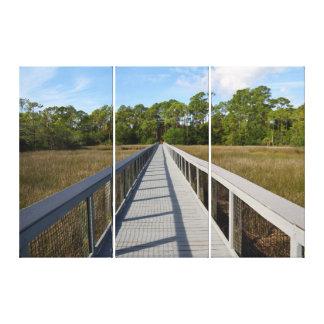 Walkway across the marsh land of Florida Canvas Print
