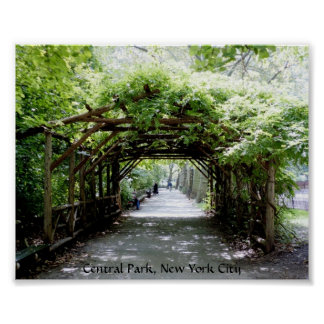 Walkway arbor in Central Park, NYC Poster