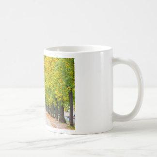 Walkway full of trees coffee mug