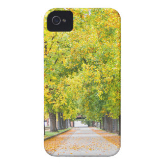Walkway full of trees iPhone 4 cover