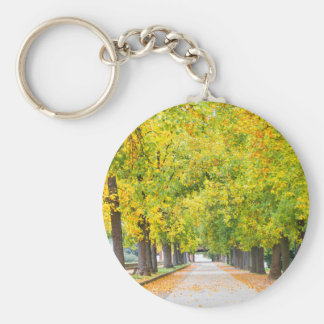 Walkway full of trees key ring