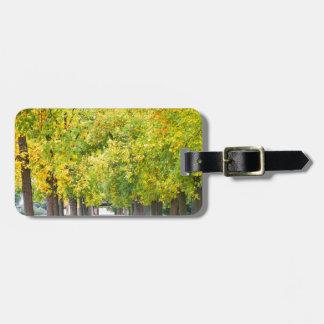 Walkway full of trees luggage tag