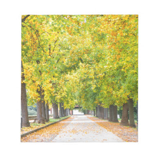 Walkway full of trees notepad