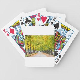 Walkway full of trees poker deck