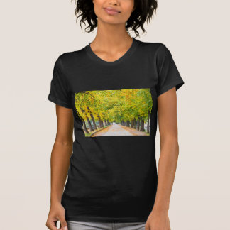 Walkway full of trees T-Shirt