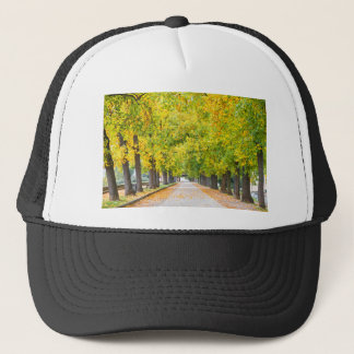 Walkway full of trees trucker hat