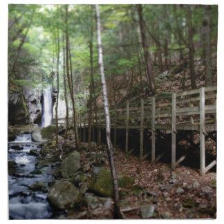 walkway near stream napkin