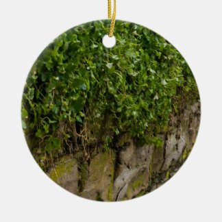 Wall Of Ivy Ceramic Ornament