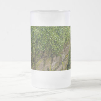 Wall Of Ivy Frosted Glass Beer Mug