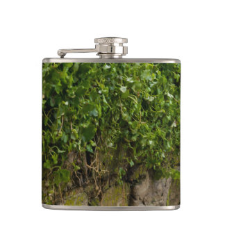 Wall Of Ivy Hip Flask
