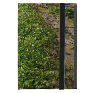 Wall Of Ivy iPad Mini Case