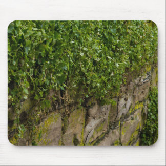 Wall Of Ivy Mouse Pad