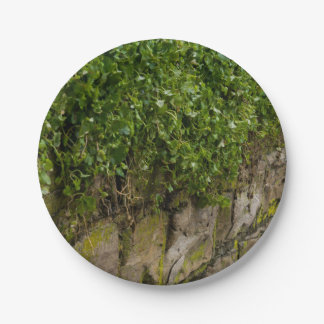 Wall Of Ivy Paper Plate