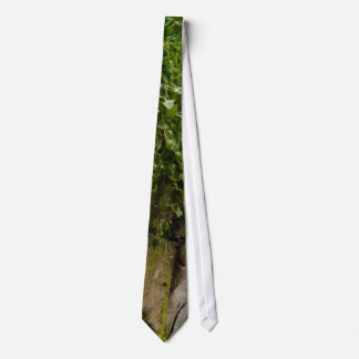 Wall Of Ivy Tie
