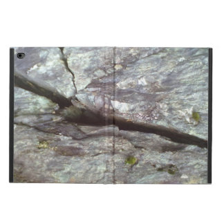 wall of stone powis iPad air 2 case