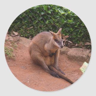 Wallaby Classic Round Sticker