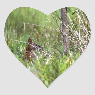 WALLABY RURAL QUEENSLAND AUSTRALIA HEART STICKER