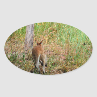 WALLABY RURAL QUEENSLAND AUSTRALIA OVAL STICKER