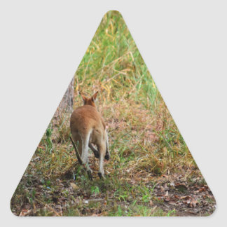 WALLABY RURAL QUEENSLAND AUSTRALIA TRIANGLE STICKER