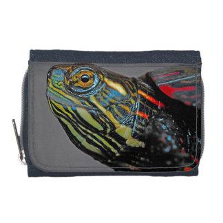Wallet Painted Turtle